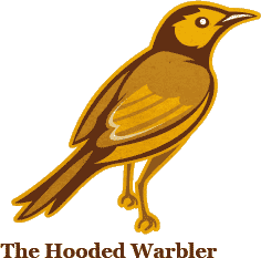 The Hooded Warbler